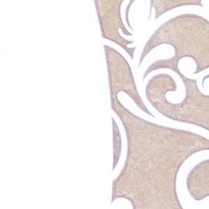 Metalizzato Bianco Kraft