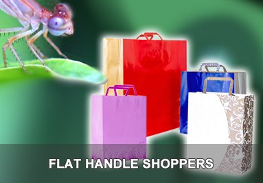 Banner 383x267 Flat Handle Shoppers Shoppers