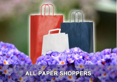 Banner 383x267 Paper Shoppers